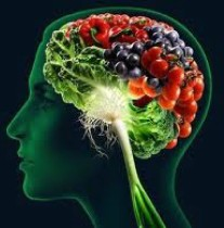 cropped-brain-food-2-11.jpg