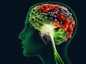 cropped-brain-food-2-111.jpg